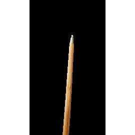 Zoom sur la pointe du bâton de marche